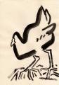 118‐4382<b>moorhen</b>A4 (29.7 x 21cms)£30‐GregPoole
