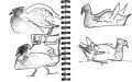 101‐6353<b>moorhen</b>bristol reservoirspermanent markerA5 sketchbook‐GregPoole