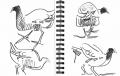 101‐6376<b>moorhen</b>permanent markerA5 sketchbook‐GregPoole