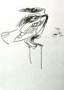 raven‐GregPoole