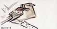 21‐4227<b>female chaffinch</b>gouache15.5 x 29.7 cms‐GregPoole