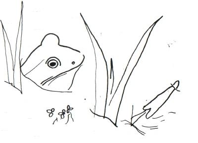 pond140401