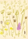 175‐6178 <b>common-spotted orchid, ox-eye daisy, goatsbeard</b> mendips wax crayon 38 x 28 cms £80&#8208;Greg&nbsp;Poole