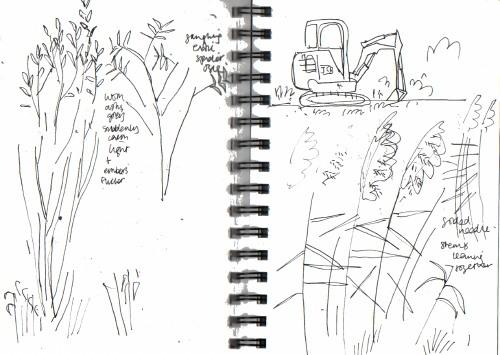 meadow fringe & digger