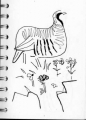 <b>chukar</b>      ink pen   A6 sketchbook  &#8208;Greg&nbsp;Poole