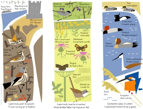 lavernock point, reserve & cosmeston lakes interpretation images