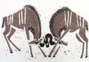 110‐5980<b>kudu sparring</b>Etosha, Namibia59.4 x 84 cms (c.A1)£180‐GregPoole