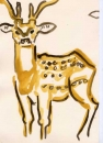 <b>spotted deer</b>    gouache  A4 (29.7 x 21cms)  £60‐GregPoole