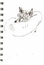bl-016  <b>fox</b>  mendips  ink pen  A6 sketchbook &#8208;Greg&nbsp;Poole
