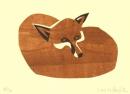 Fox sleeping‐GregPoole