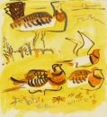 194‐6662 <b>pin-tailed sandgrouse & great bustard</b> extremadura, spain gouache 32 x 32 cms £160‐Greg Poole