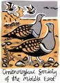 black tailed sandgrouse, OSME t-shirt ‐ screenprint ‐ 56 x 38 cms ‐ £60 ‐‐GregPoole