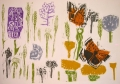 71‐6127 <b>small copper, green winged orchid & meadow flora</b> bristol reservoirs woodcut 29.7 x 42 cms (A3) £160‐Greg Poole