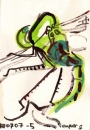 76‐4161 <b>emperor dragonfly female egg laying</b>   A5 (21 x 14.5 cms) £40‐Greg Poole