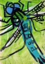 76‐4172 <b>hairy dragonfly</b>   38 x 28 cms £80‐Greg Poole