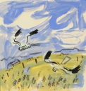 194‐6664 <b>montagu's harriers over barley field</b> extremadura, spain gouache 32 x 32 cms £150‐Greg Poole