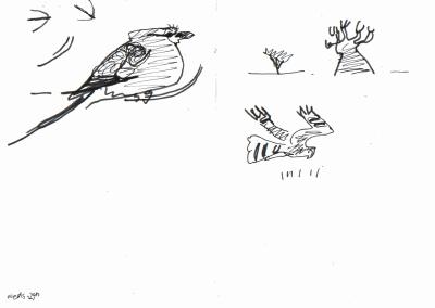 roller, palm swifts & montagu's harrier