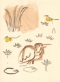 212‐6885<b>squacco & wagtails</b>djoudj gainthegouache38 x 28 cms‐GregPoole