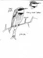 208‐6807little bee-eater <br /> savannah nr. palmarin <br /> ink pen <br /> A5 sketchbook <br />&#8208;Greg&nbsp;Poole