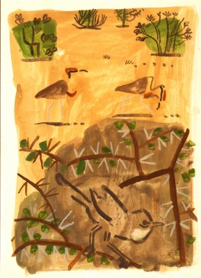 whitethroat & temminck's coursers