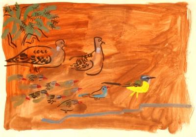turtle doves, qualia, cordon bleu & yellow wagtail