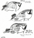 <b>teal feeding</b>bristol reservoirspermanent marker & ink pen28 x 28 cms‐GregPoole